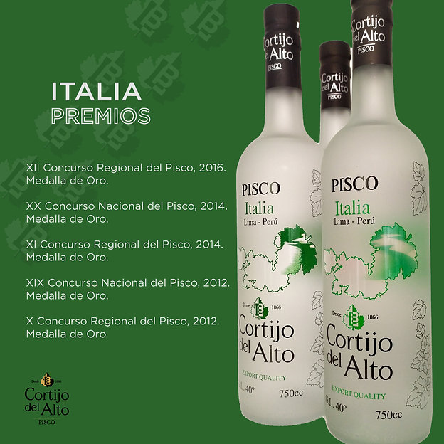 Italia Premios.jpg
