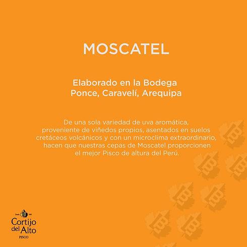 Moscatel_Descripción.jpg