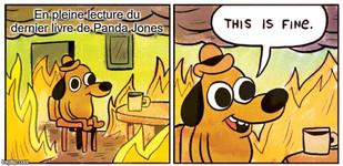 Meme lecture PJ