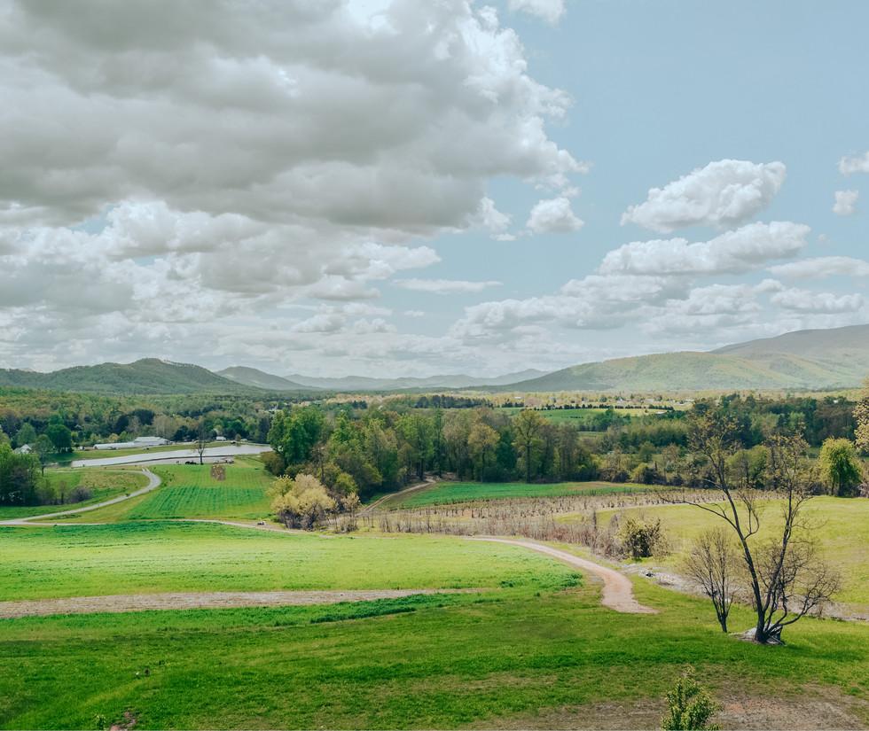 Down Valley (1).JPG