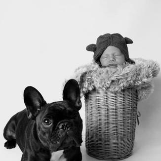 Jack & Waffles // Newborn
