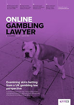 Online Gambling Lawyer