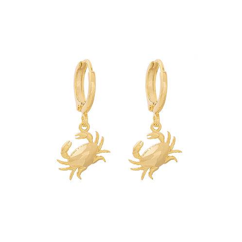 Don't talk crab - goud