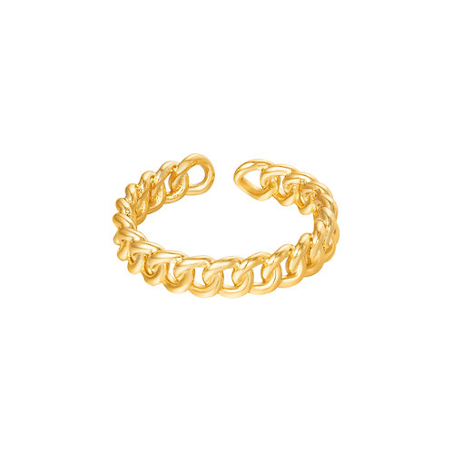 In connection ring - goud