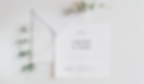 convite de casameno minimalista