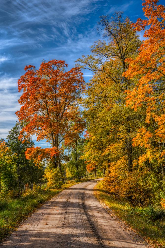 Höstens sprakande färger