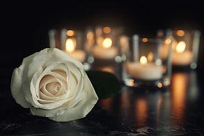 Abschied_weiße_Rose.jpg