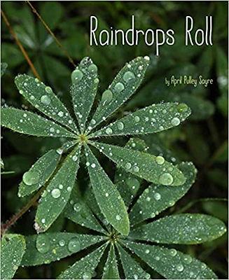 raindrops roll book cover.jpg