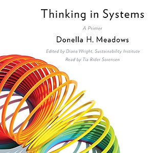 thinking systems.jpg