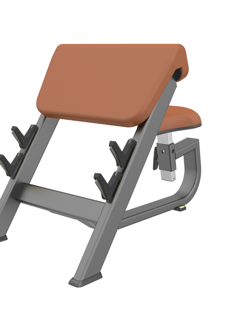 Biceps Curl Bench LUXURY