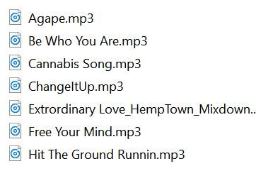 Songlist_MP3sOfTracks1.JPG