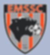 emssc_transparent.png