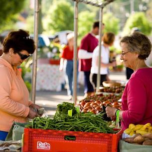 Salisbury fresh foods and market