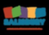 DSI Logo_CMYK-01.png