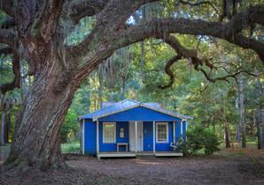 Frances Jones Home and Live Oak Tree