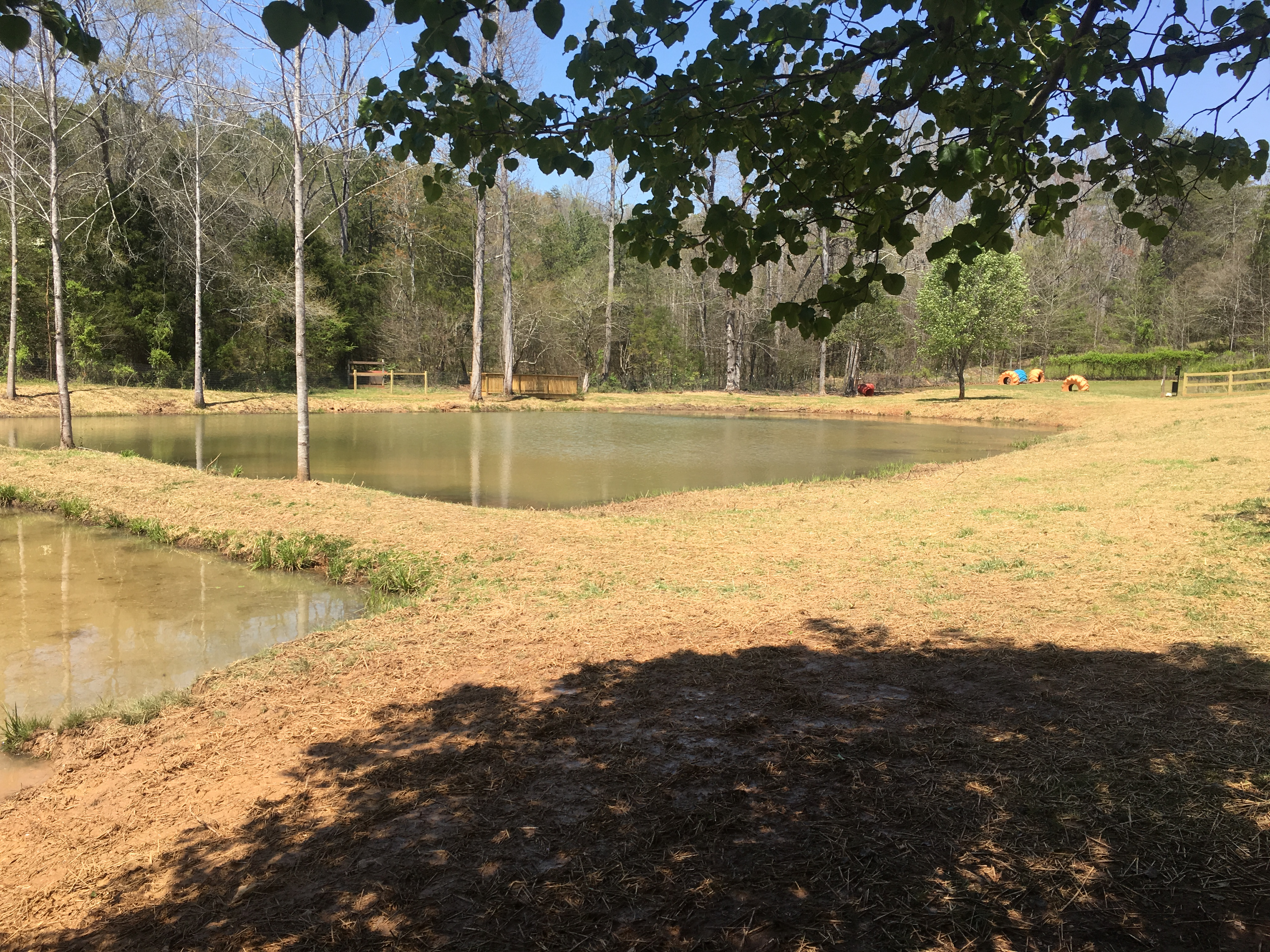 Double pond with playground