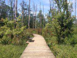 haw river boardwalk