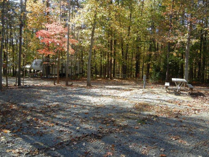 Open campsite at Lake Reidsville