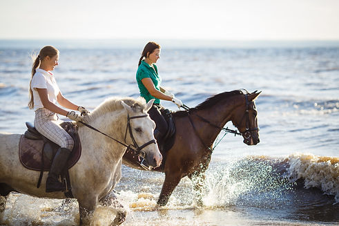 Horseback Riding.AdobeStock_120326728.jp