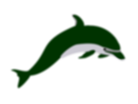 dolphin-296557-01.png
