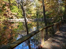 fall bridge shot