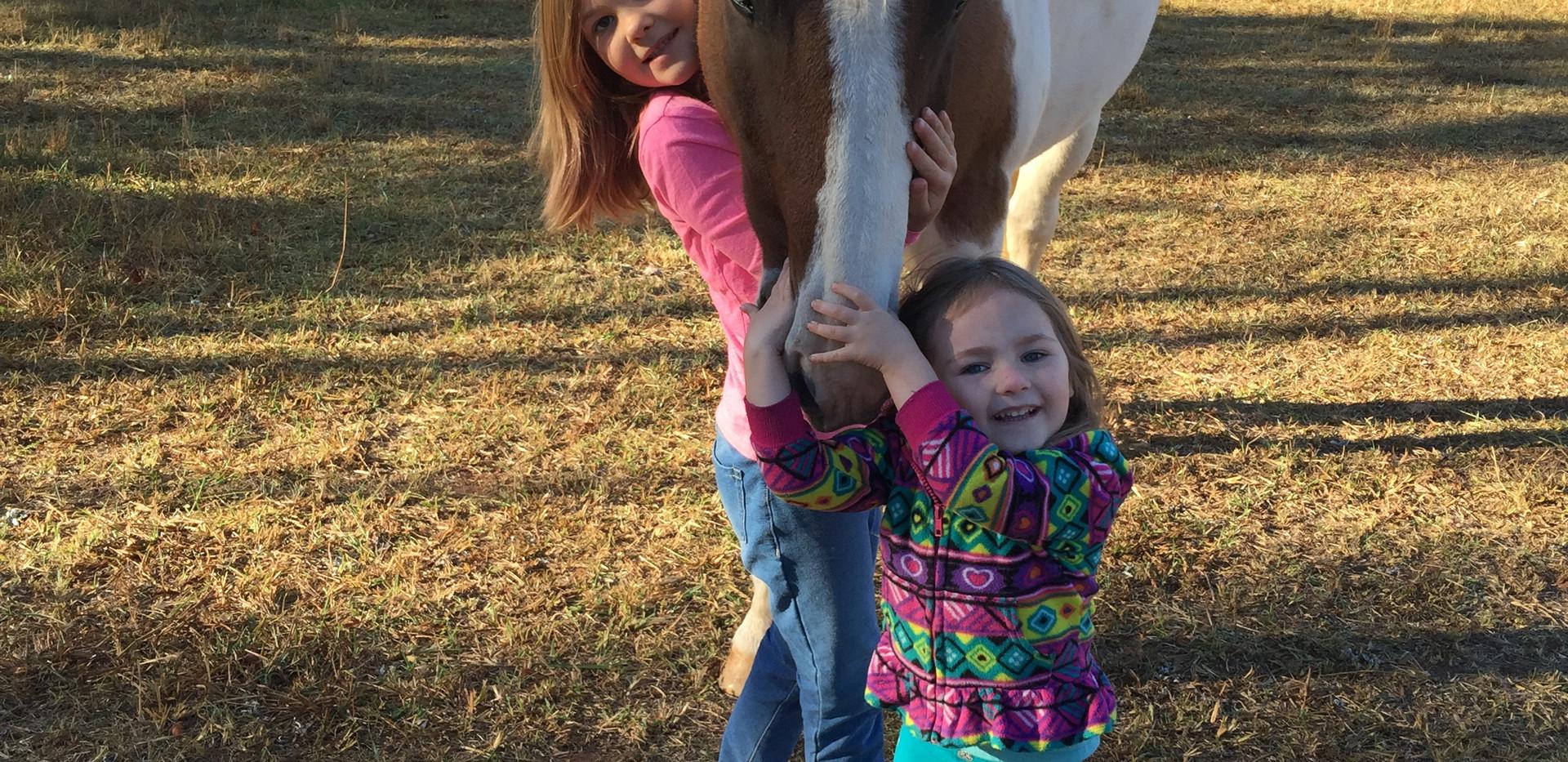 Horse Cuddlin Time