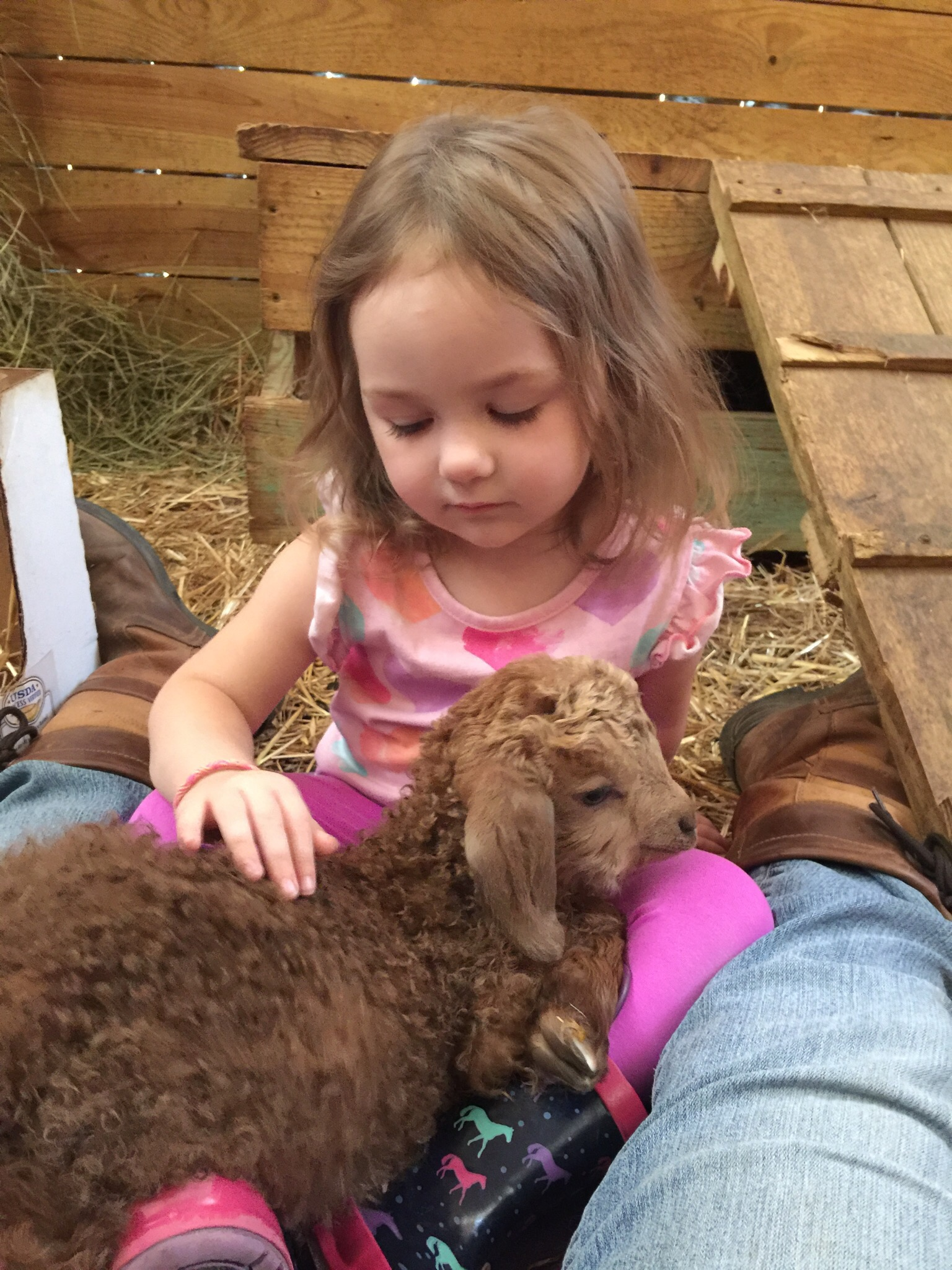 Tiny toddler with baby goat