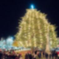 Rutherfordton Christmas Tree small.jpeg