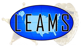 LEAMS logo Clear.png