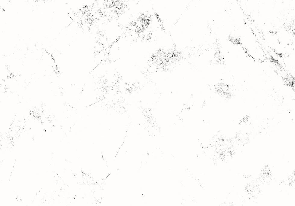 WhiteBG_edited.png