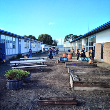 Beutifying a school's garden