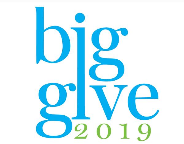 BigGive2019.PNG