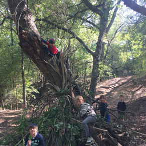 ForestSchoolBoys.JPG