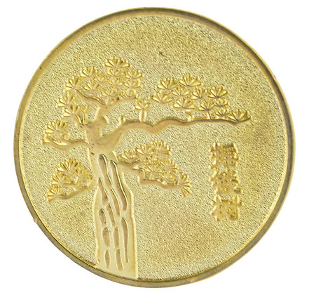 Feng Shui coin For Prosperity
