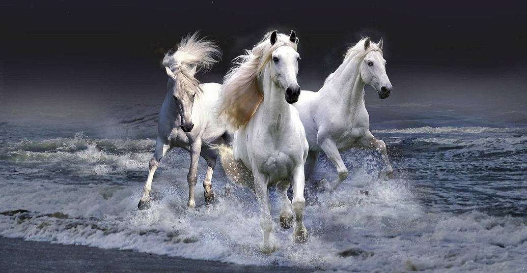 237416-3d-view-horses-photo-manipulation