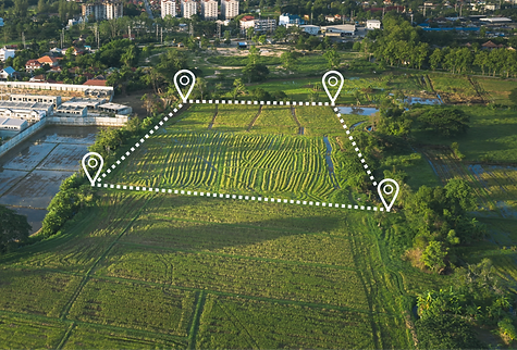 Land%20plot%20or%20land%20lot.%20Consist%20of%20aerial%20view%20of%20green%20field%2C%20position%20p