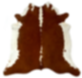 Our 100% Brazilian Cow hides are the natural, unbleached skin and hair, thusretainingthe originalcoloring of the animal.  We sell our Brazilian Cowhides both online and from our Brisbane northside warehouse.