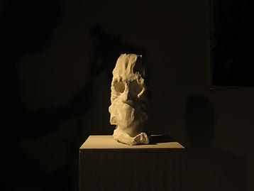 René Pigeon, Anatomie : Formes et mouvements