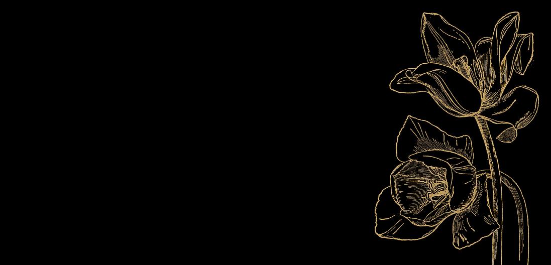 Fond noir tulipe beige.png