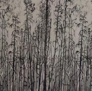 "Honourable Mention  ""Parson's Lake Road NWT""  by Phyllis Gordon"