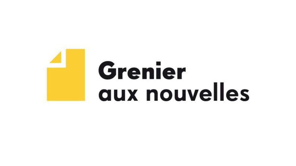 ARTICLE SUR LE SITE GRENIER AUX NOUVELLES