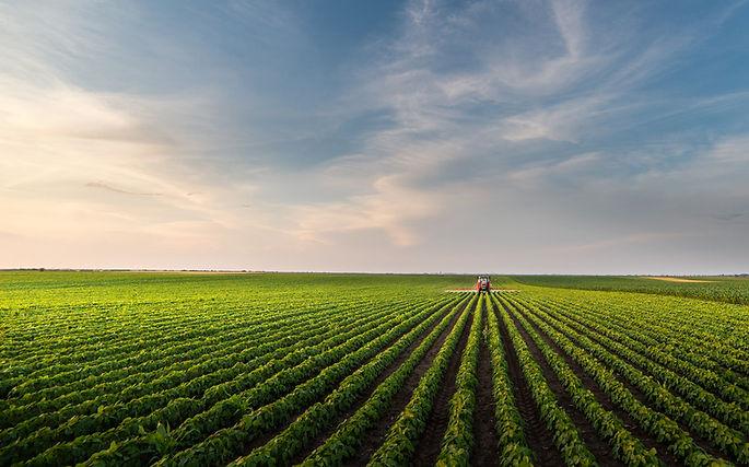 060420-farm-agriculture-fieldsadobestock