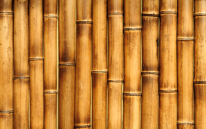 brown-bamboo-texture-4k-macro-bamboo-tex