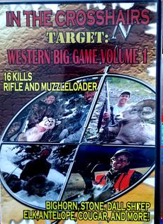 Western Gig Game
