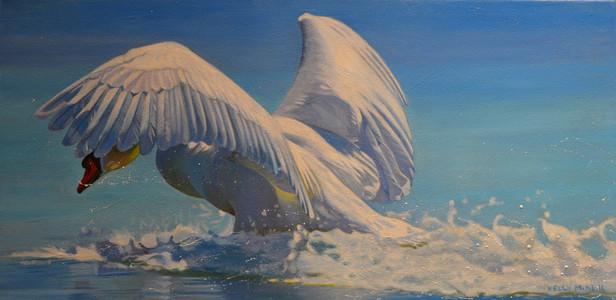 Kelly McNeil Mute Swan-10X20.jpg