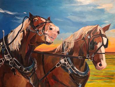 Janice Ykema Horses.jpg