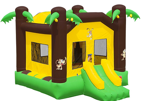 Bounce house rentals water slide rental in Tallahassee