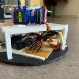 Prototyping 3