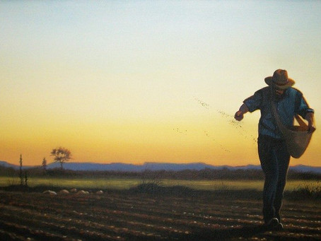 Parables Part 8 - Sower and Seed