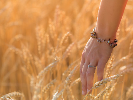 Parables Part 9 - Wheat and Tares